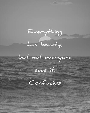 beautiful-quotes-everything-has-beauty-but-not-everyone-sees-it-confucius-wisdom-quotes