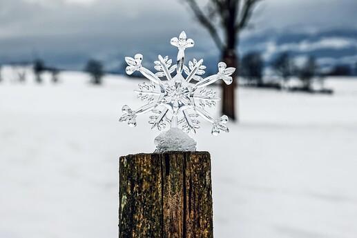 snowflake-5826679_1920