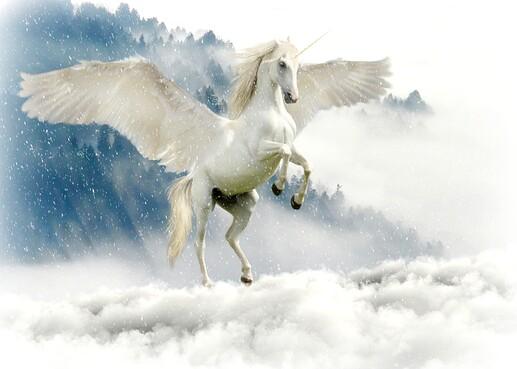 unicorn-2875349_1920
