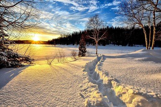 winter-landscape-636634_1920