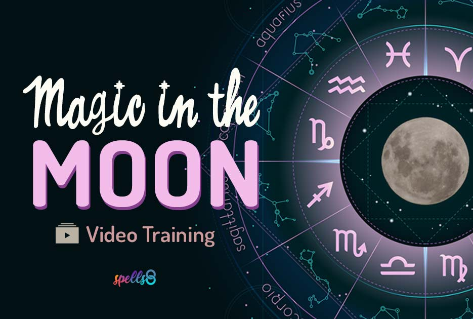 Magic-in-the-Moon-Video-Training